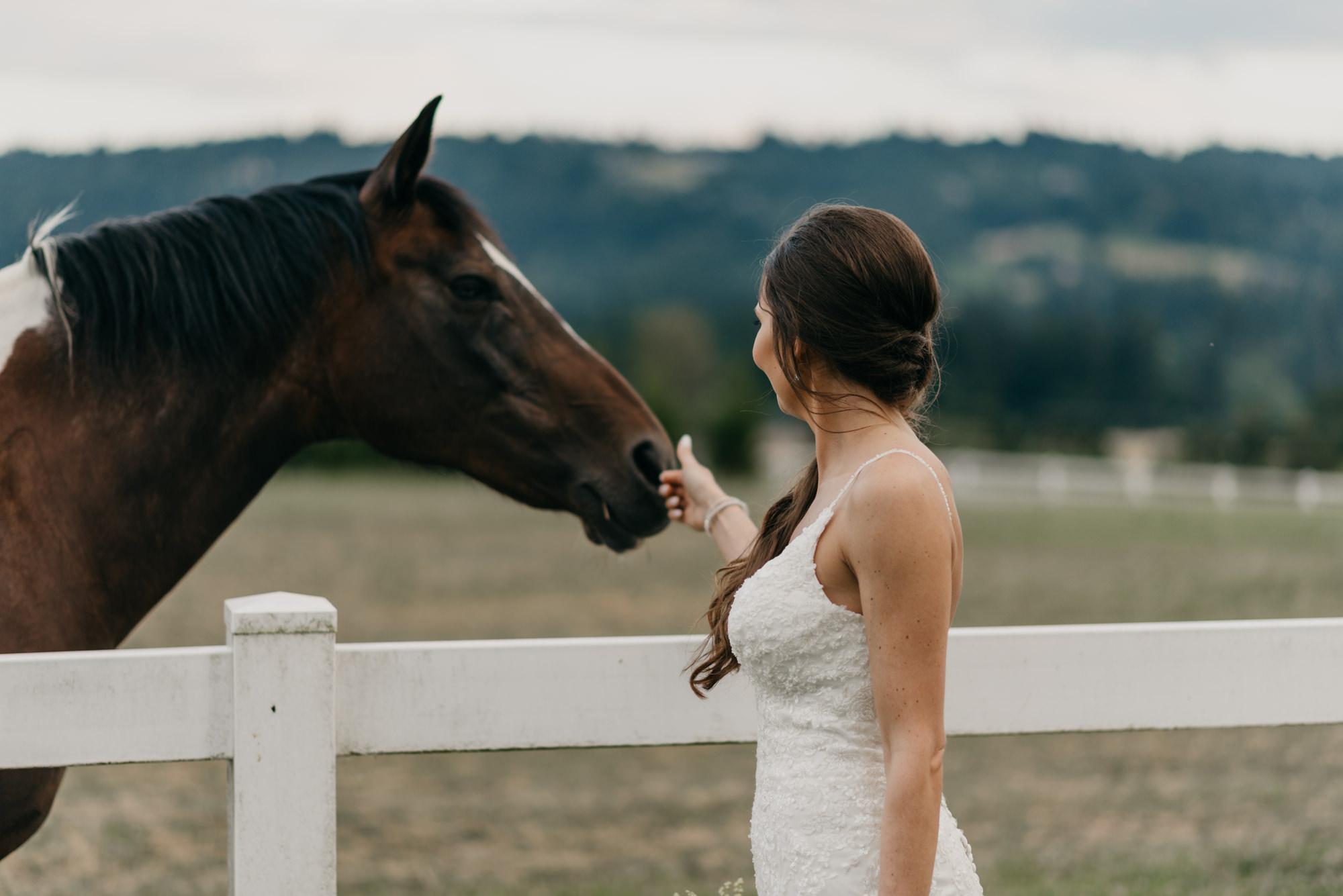 189-barn-kestrel-portland-northwest-horse-sunset-wedding.jpg