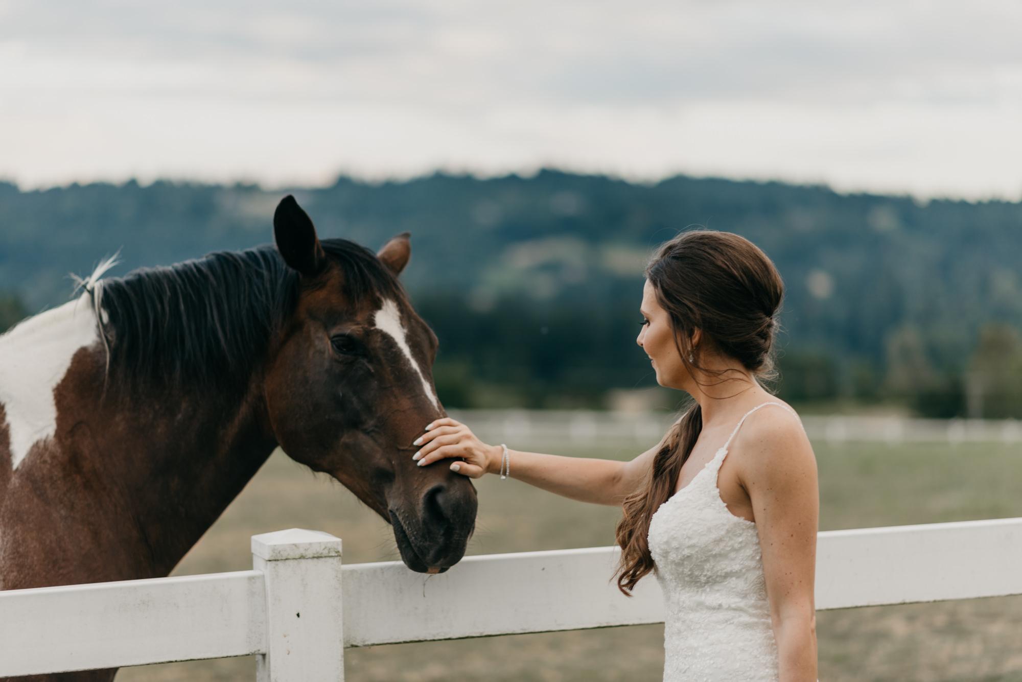 190-barn-kestrel-portland-northwest-horse-sunset-wedding.jpg
