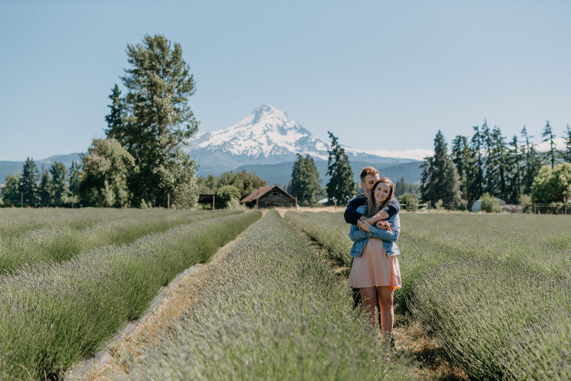 8-Mt-hood-lavender-farms-engagment-couple-summer-7106.jpg