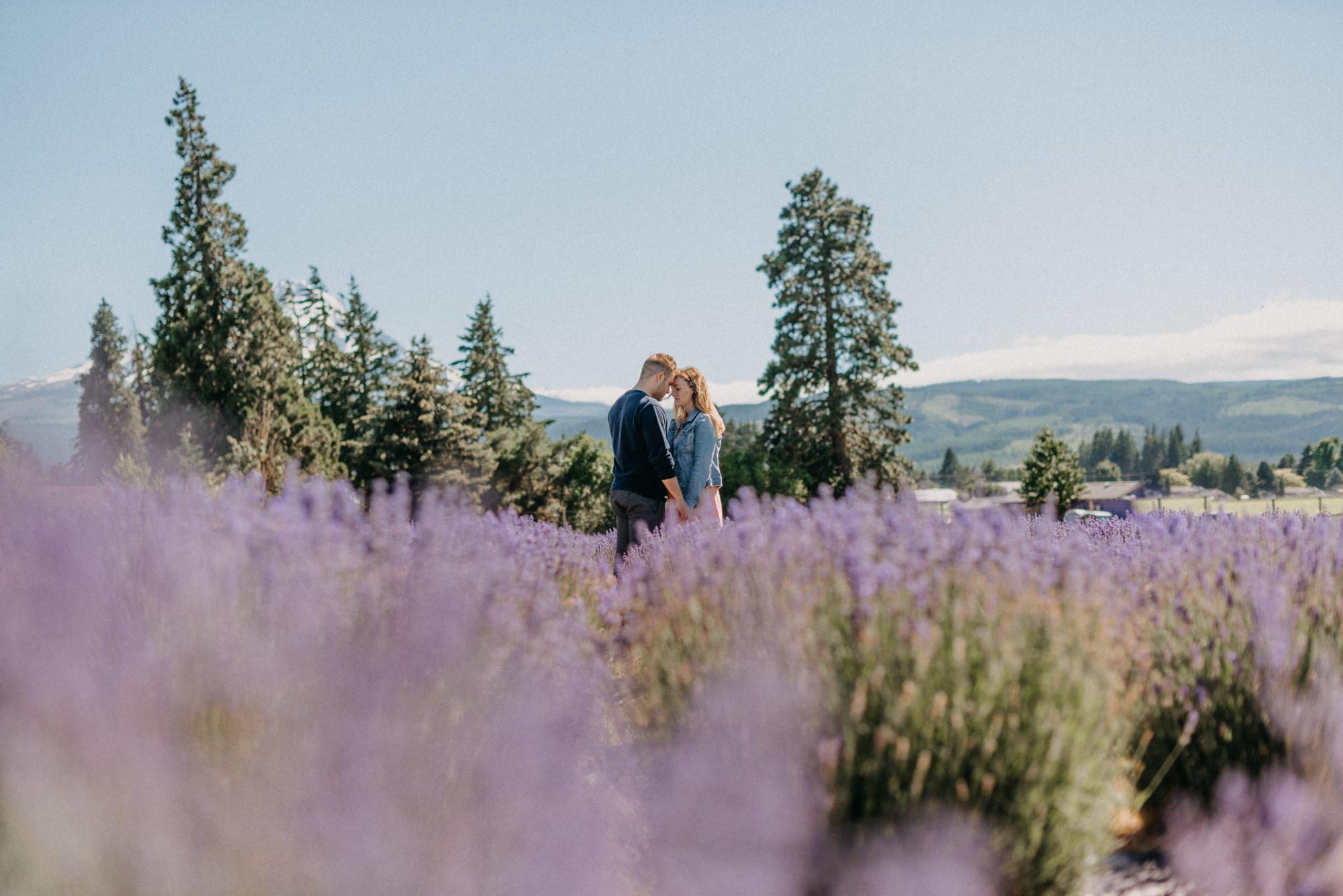 9-Mt-hood-lavender-farms-engagment-couple-summer-7149.jpg