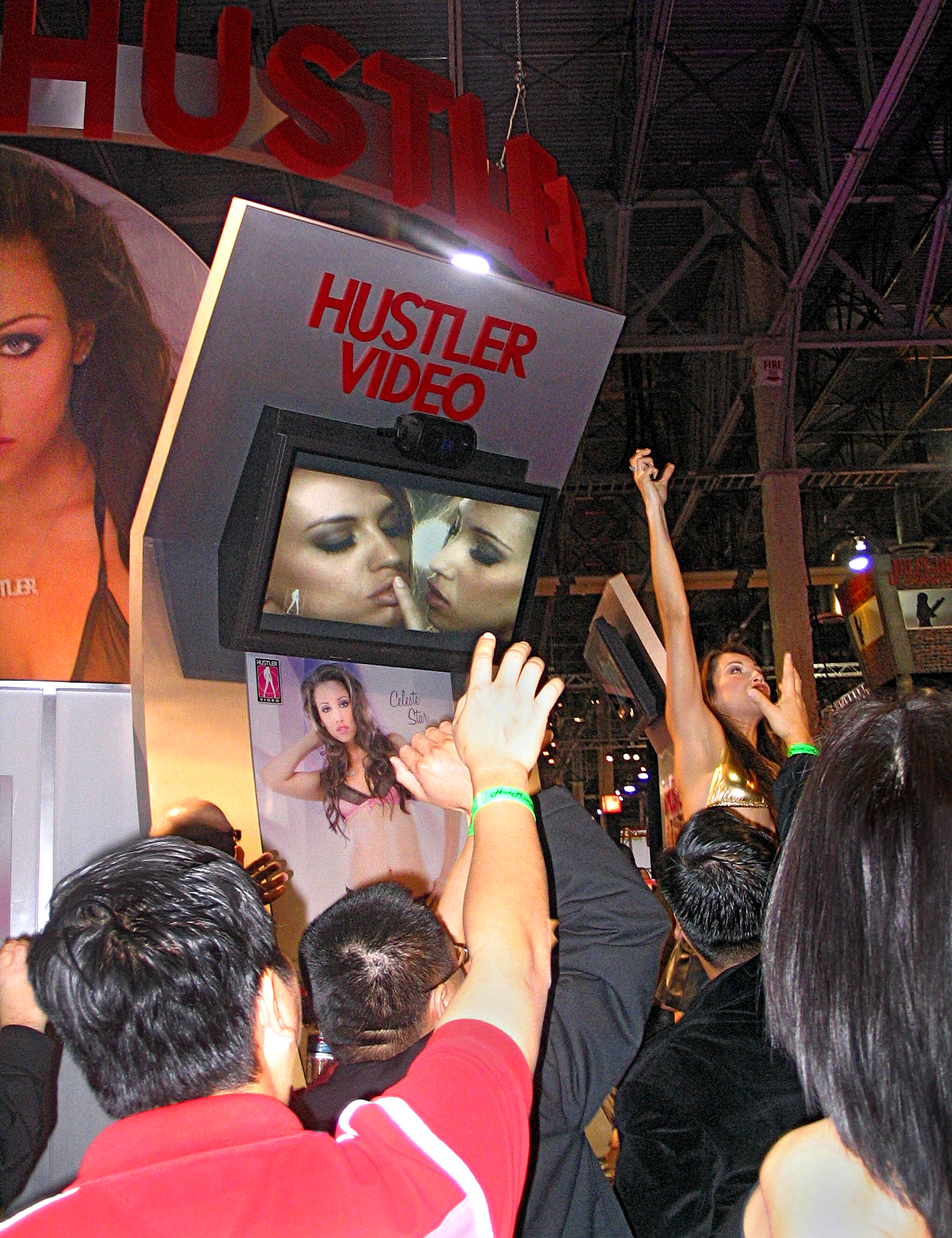 A scene from the 2008 Adult Entertainment Expo, Las Vegas. Photo by Lynn Comella.