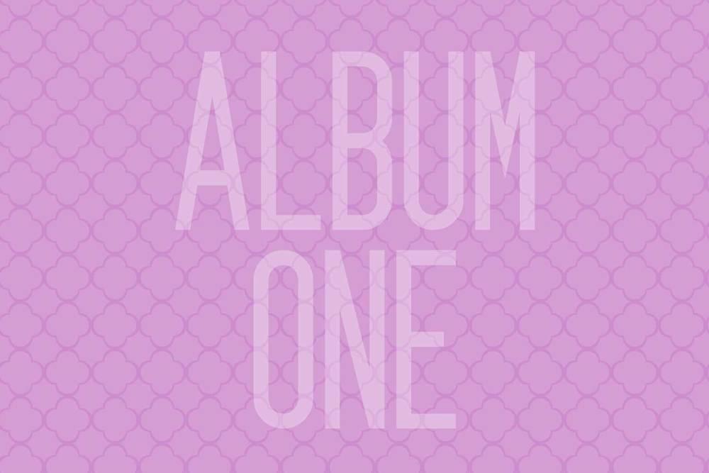 album1_1500x1000 copy.jpg