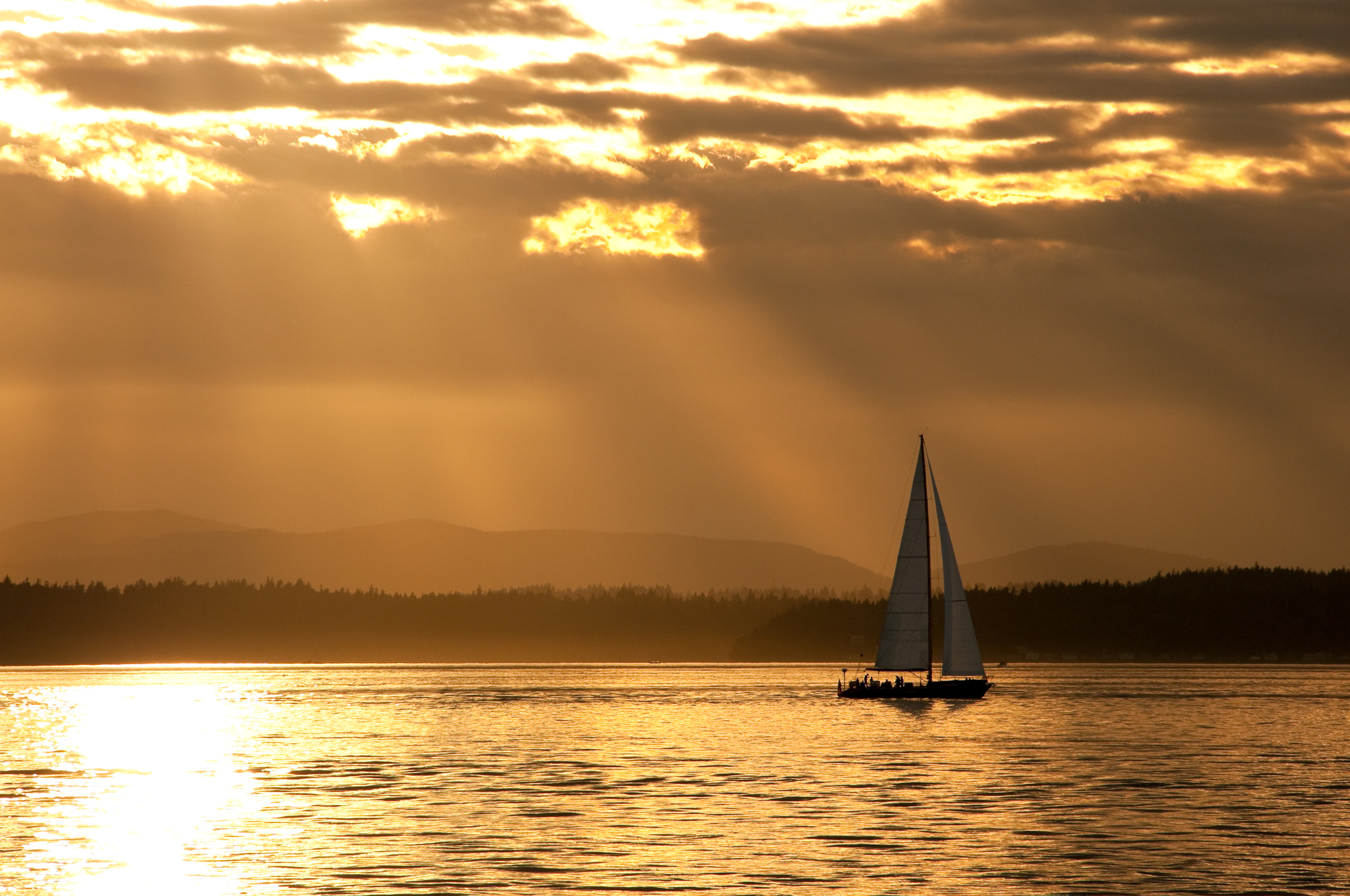 Let's Go Sailing   Sailing & Boat Rides from Seattle's
