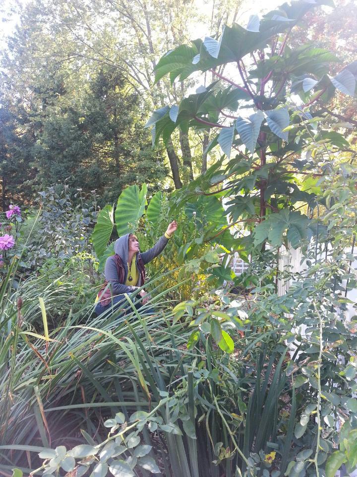 Garden Jen IMG_1458 copy.JPG