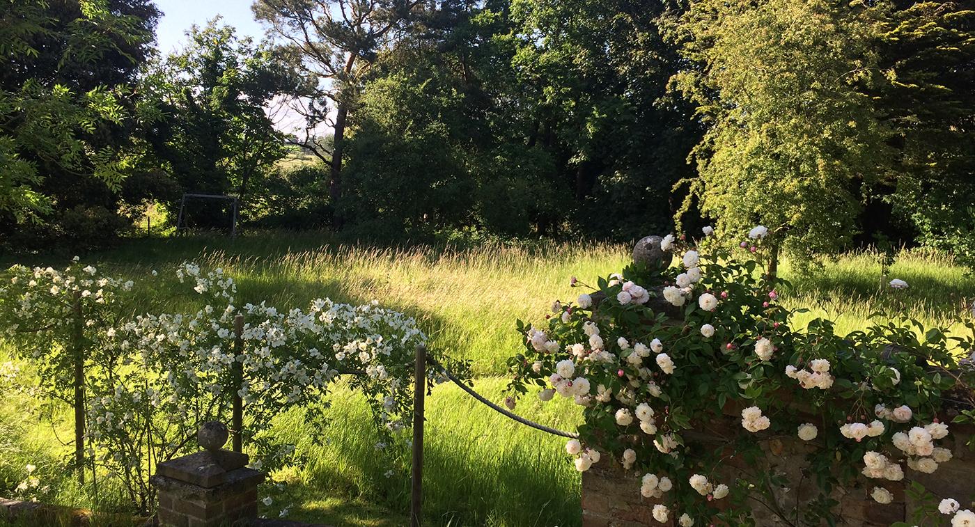 JHS Suffolk garden J.jpg