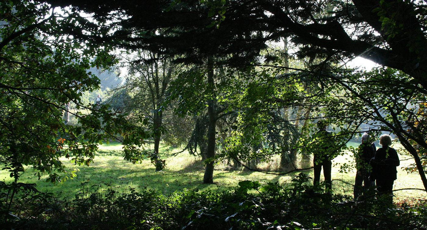JHS Suffolk garden M.jpg