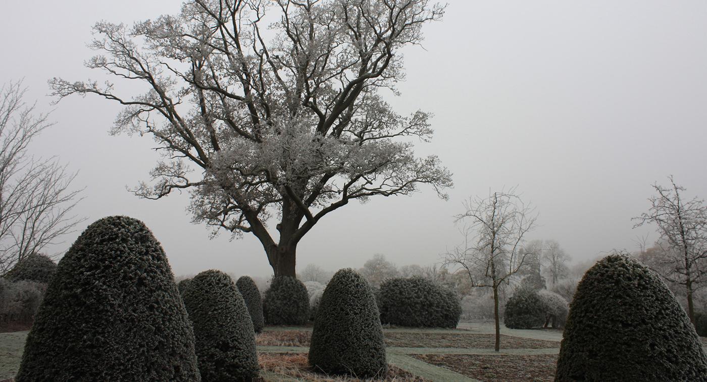 Berks garden I.jpg