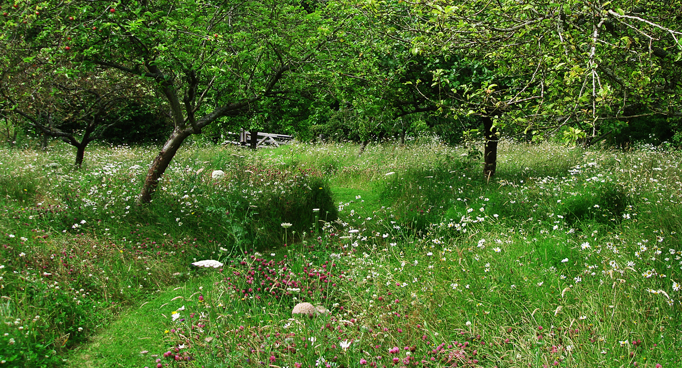 Berks garden P.jpg