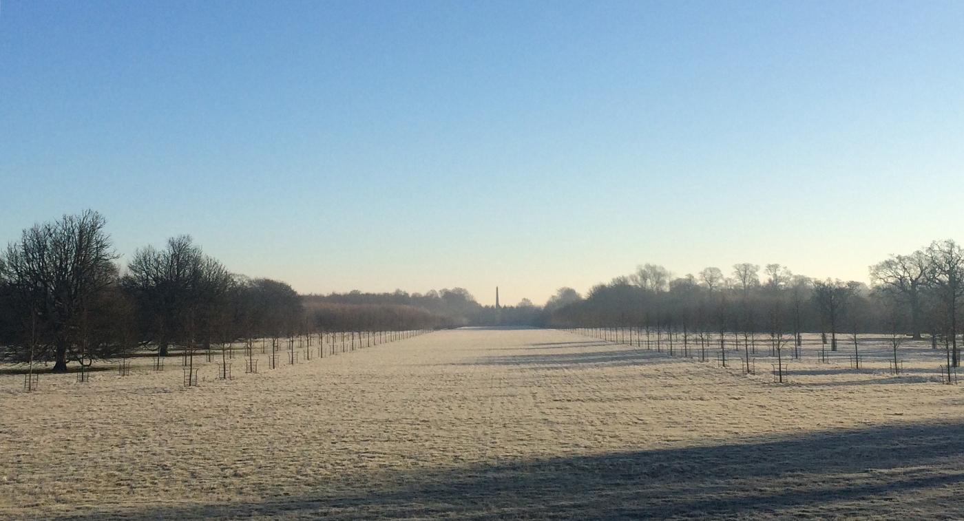 Oxfordshire estate H.jpg