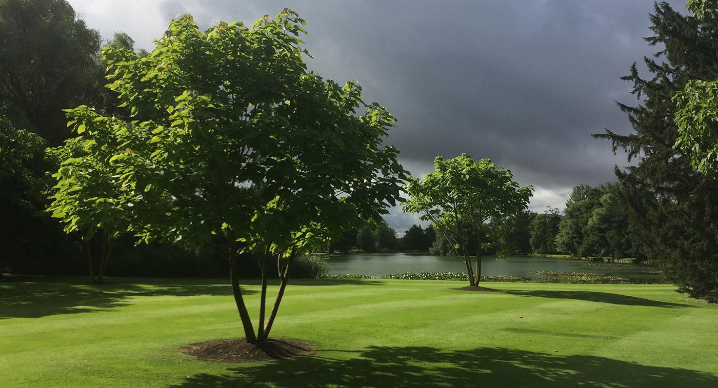 Oxfordshire estate M.jpg