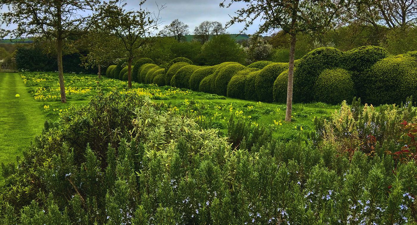 Berks garden T.jpg