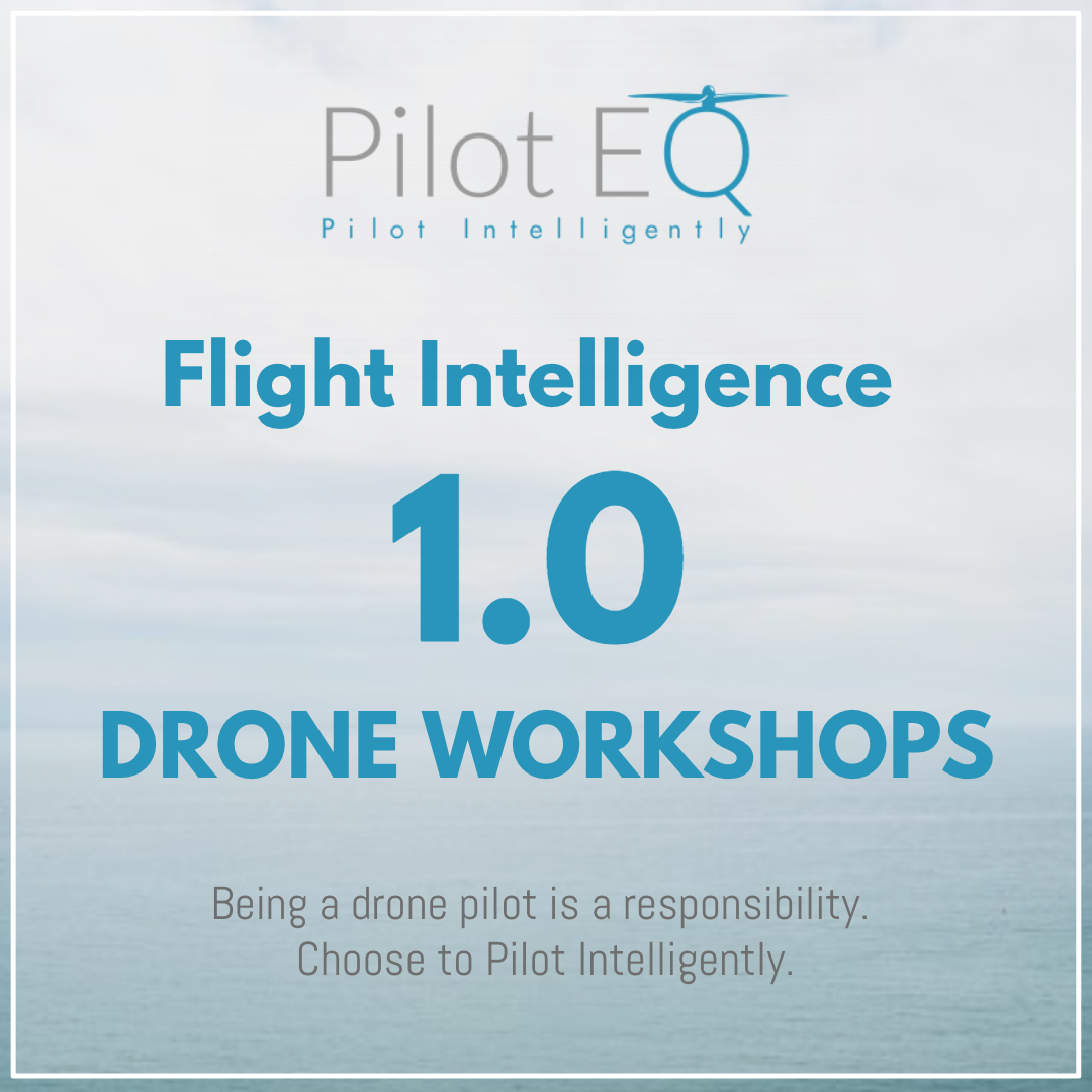 FI 1 Drone Workshop AD CARD.jpg