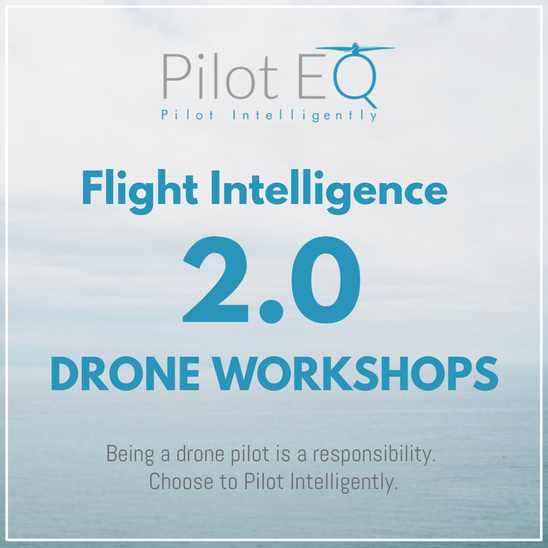 FI 2 Drone Workshop AD CARD (1).jpg
