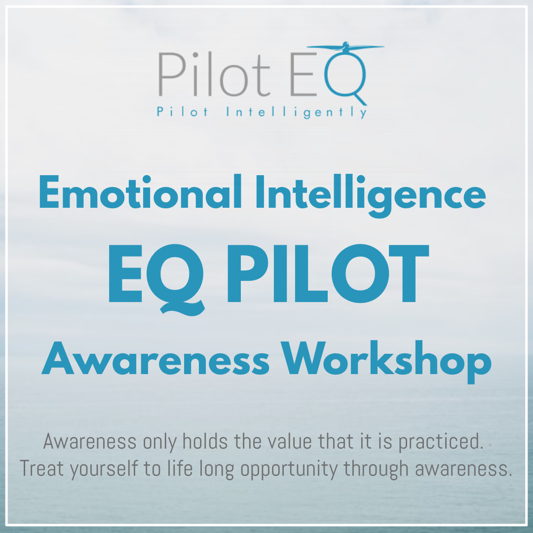 EQ Pilots Awareness Drone Workshop.jpg