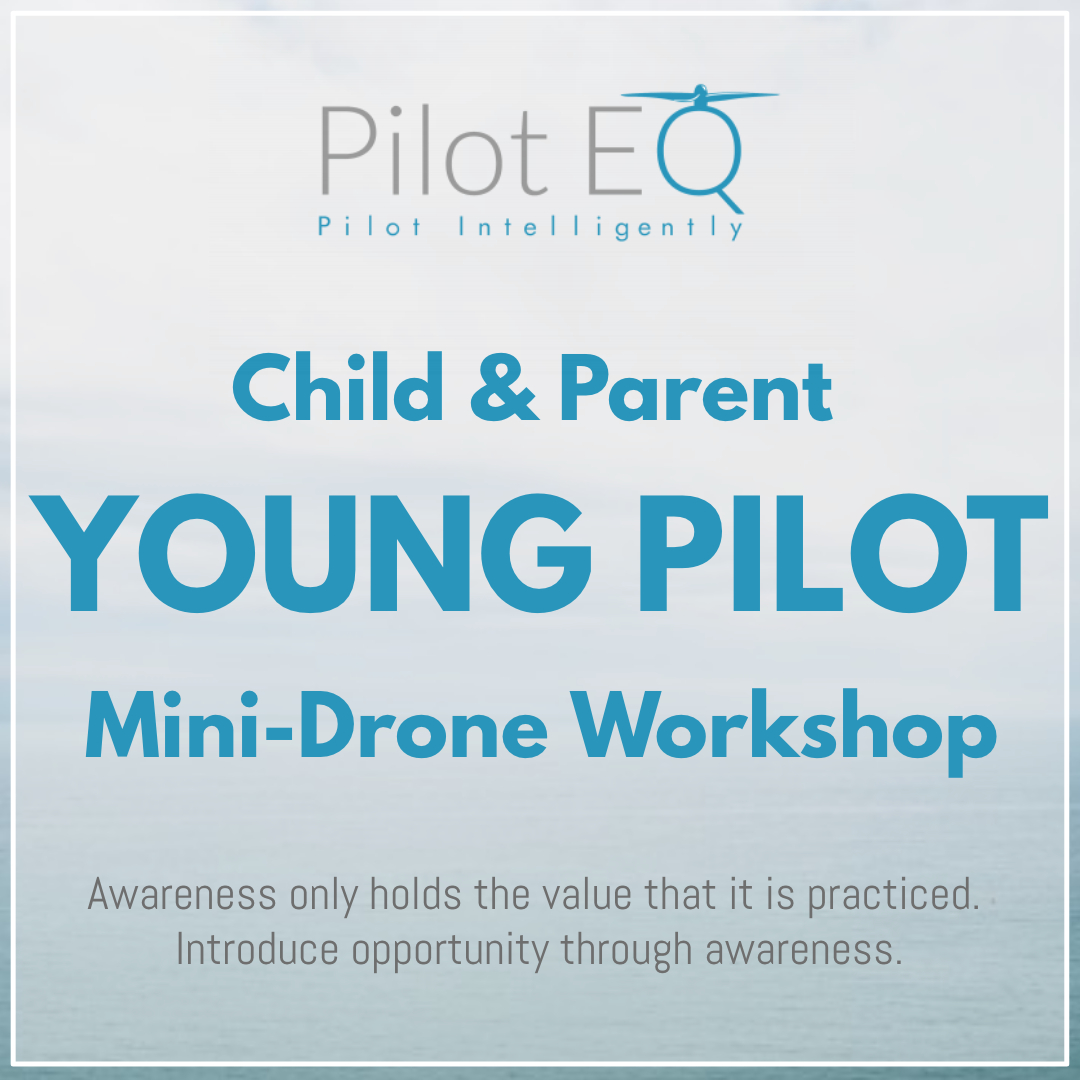 Young Pilot Drone Workshop.jpg