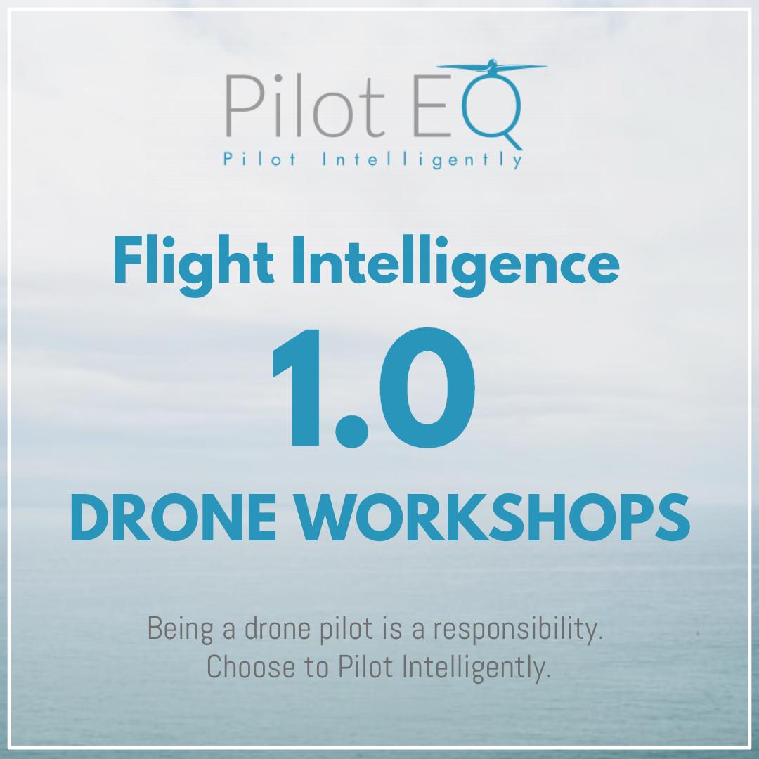 FlightIntelligence_1_PilotEQ.jpg
