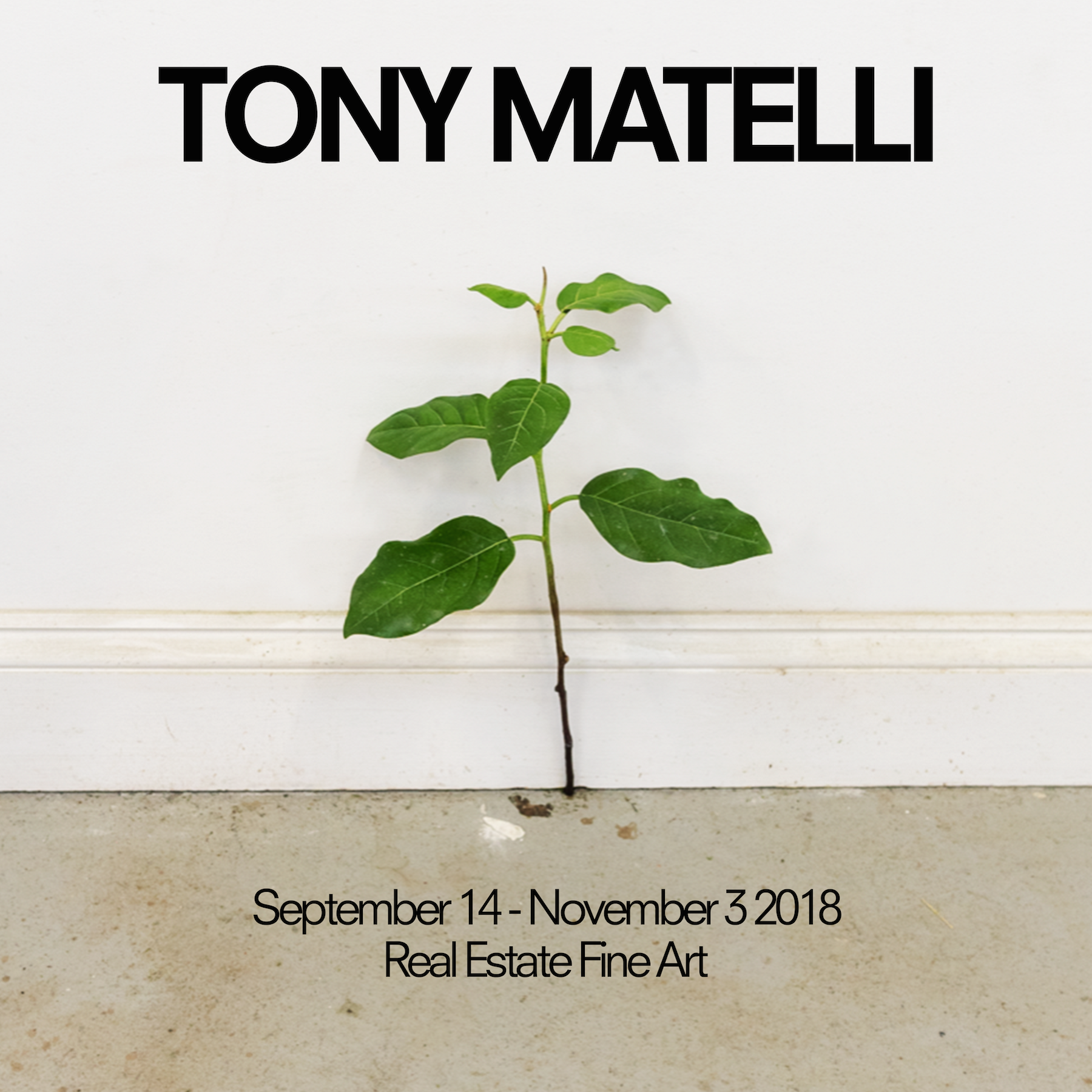Tony Matelli Real Estate PR Run of Show.png