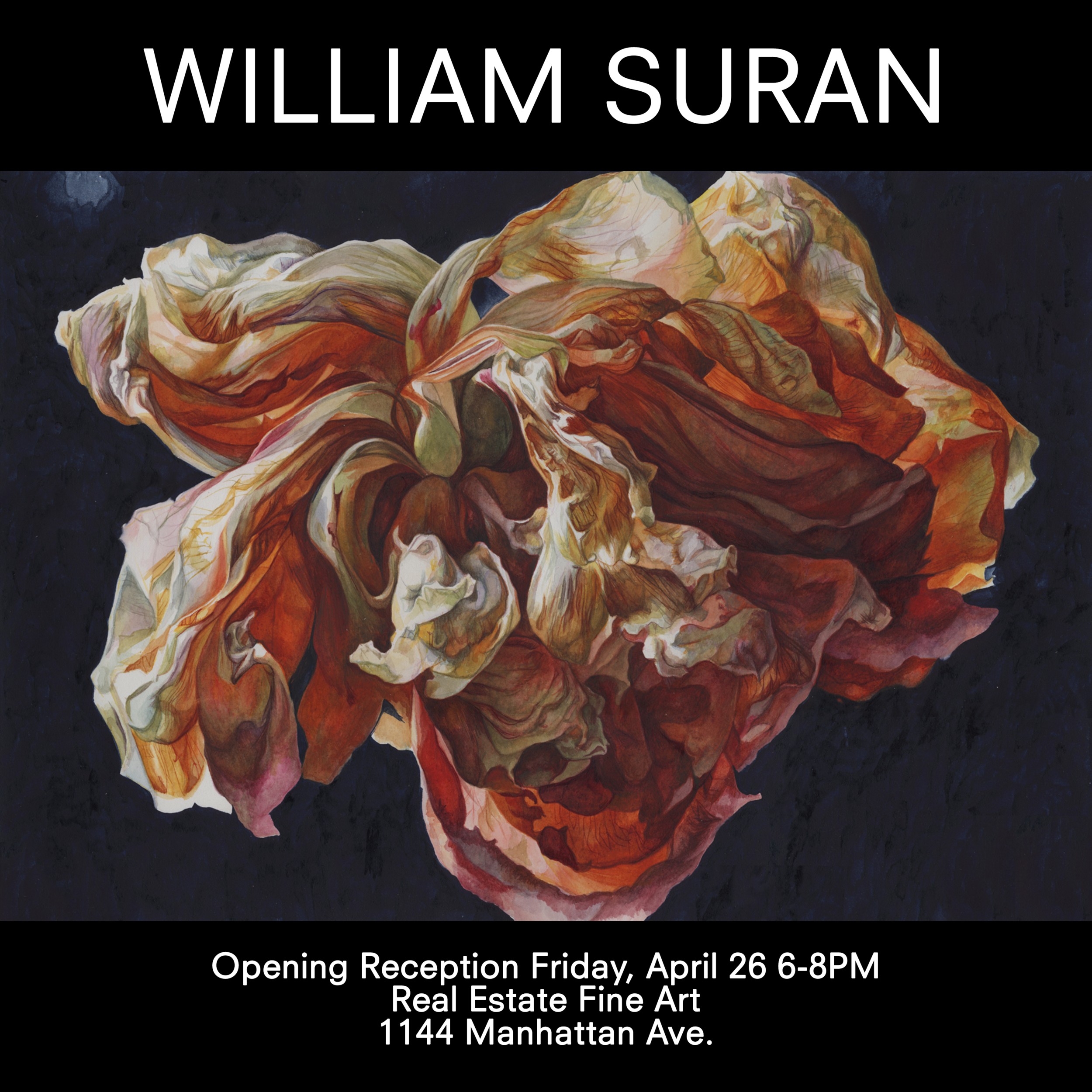 William Suran at Real Estate Fine Art.png