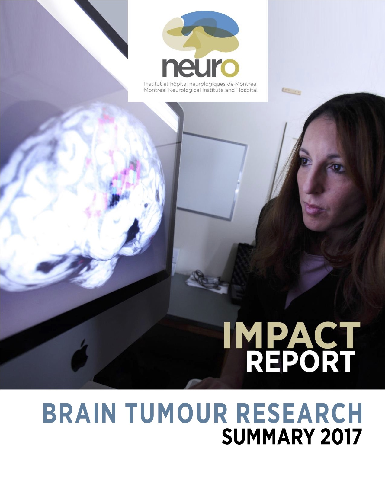 Impact Report 2017.jpg