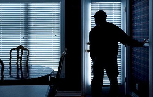 Picture of a burglar in a dark house
