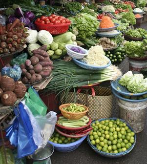 Nutrition Evaluation Photo