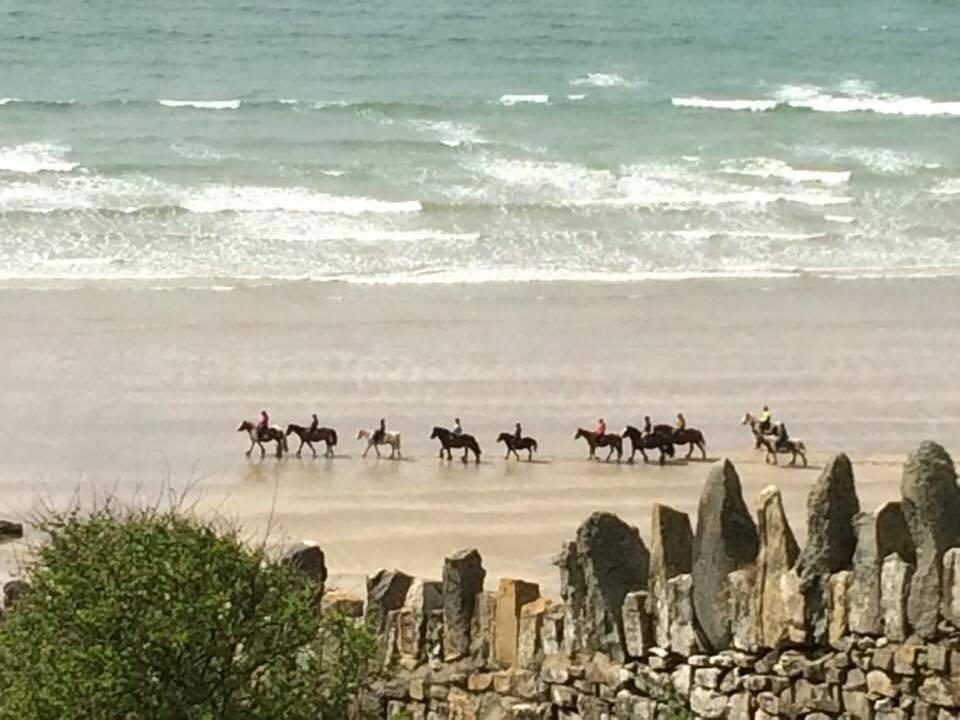 Horse riding on Druidston beach