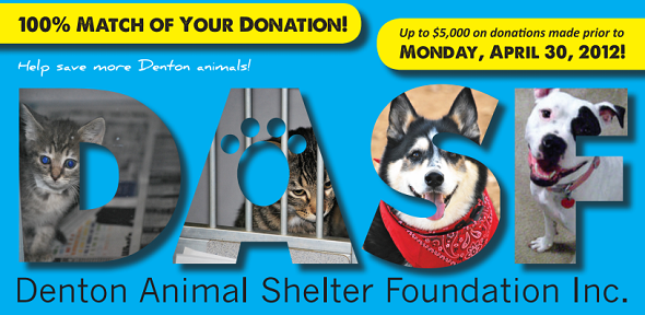 Collage of shelter pets inside of the DASF logo