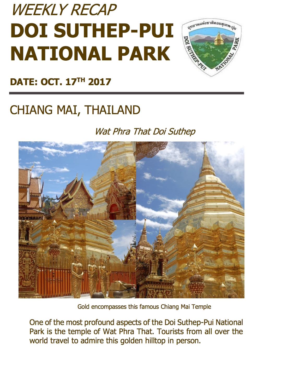 #4 Weekly Recap of Doi Suthep.jpg