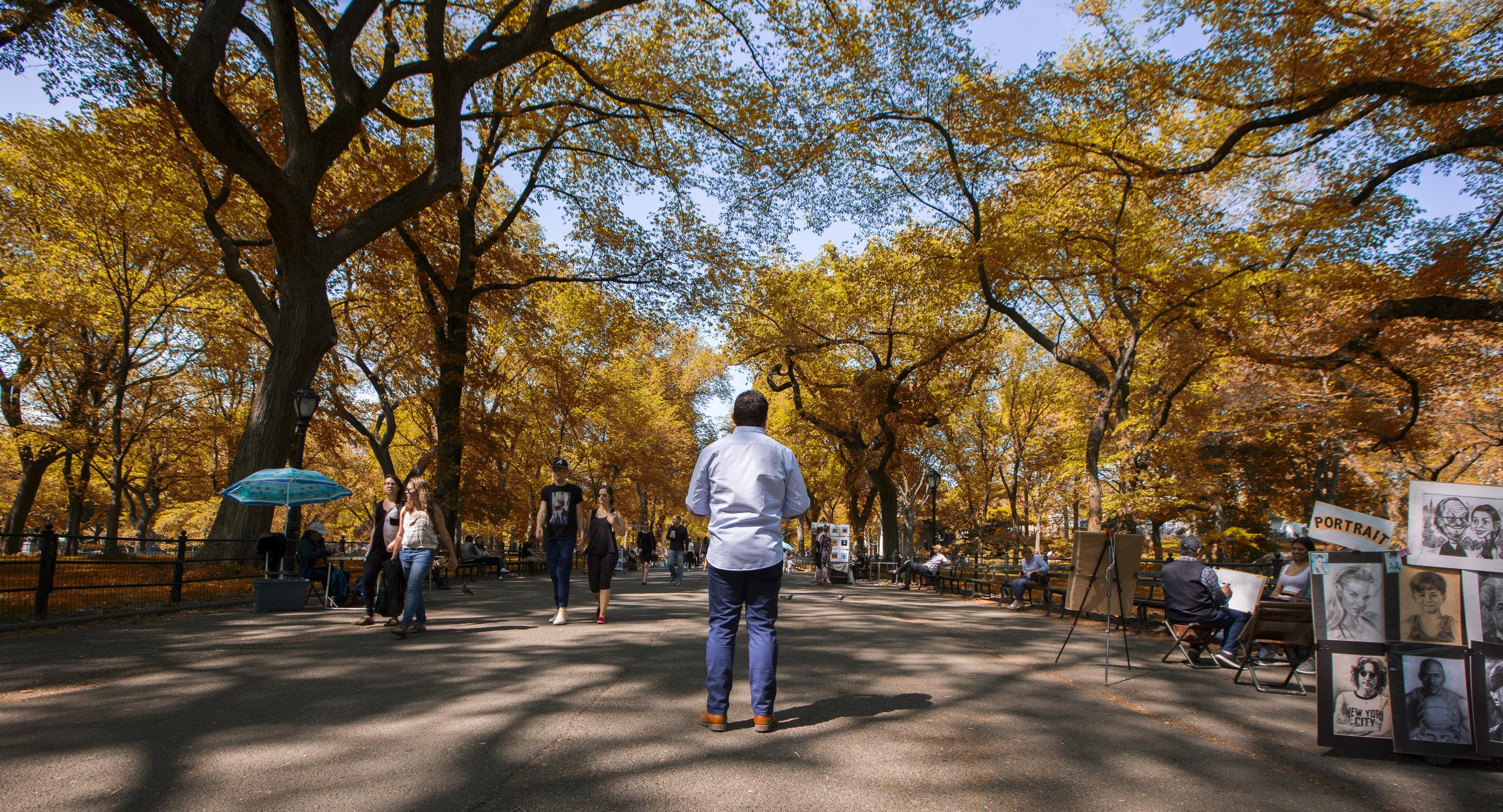 GP_Central Park.jpg