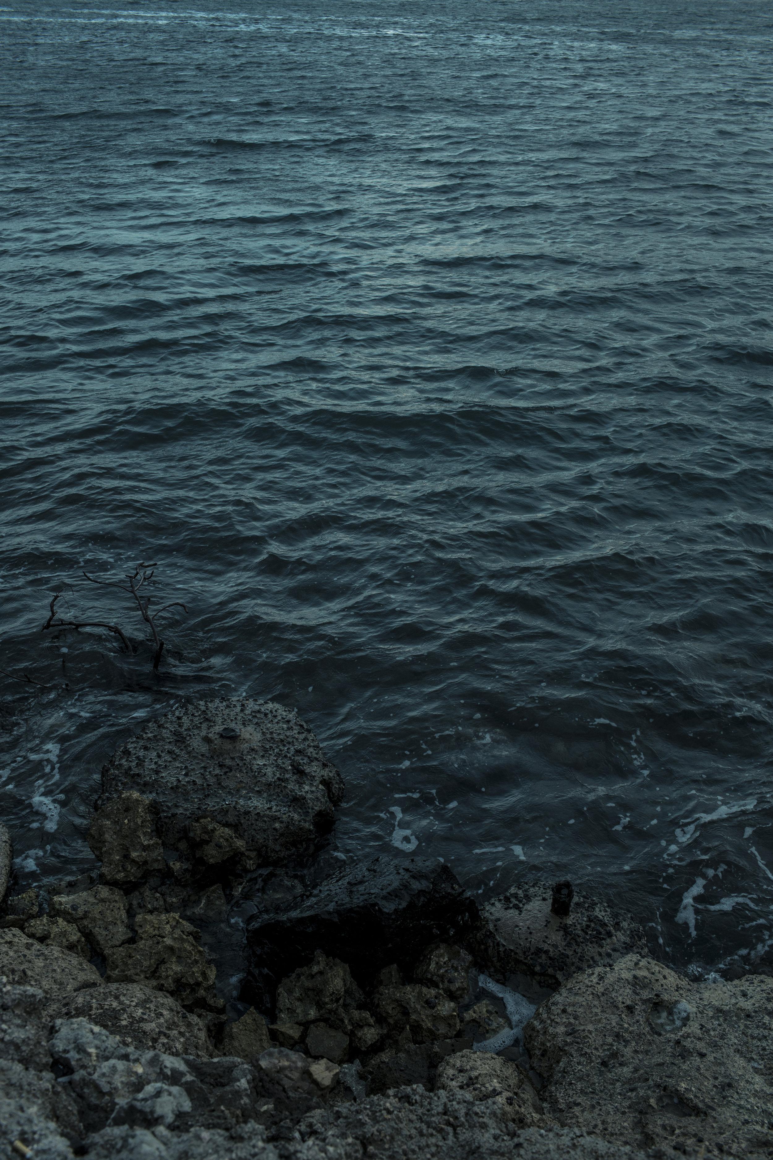 Water's edge.jpg