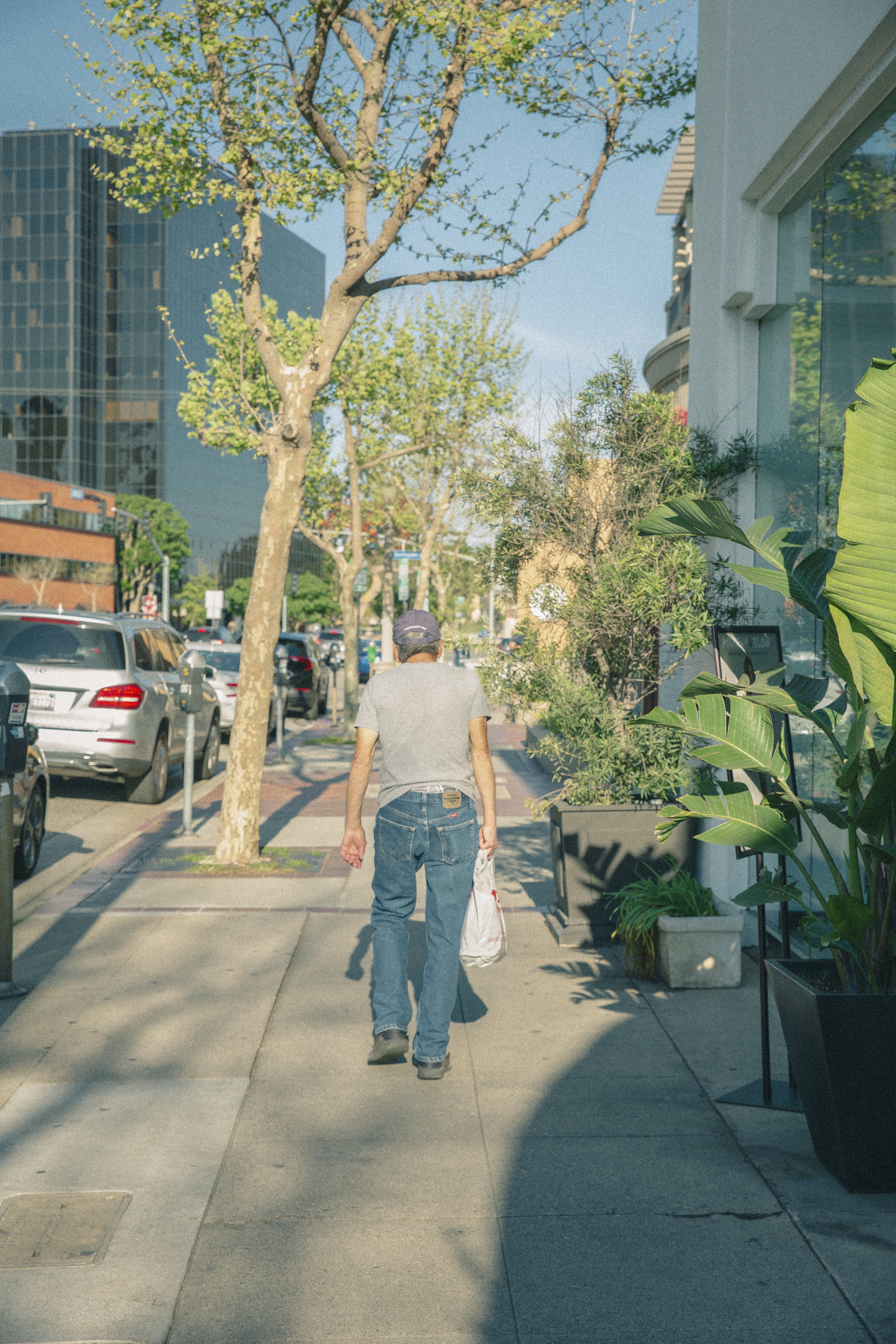 San Vicente_Street.jpg