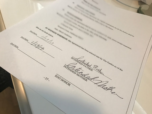 Egg Donor Contract