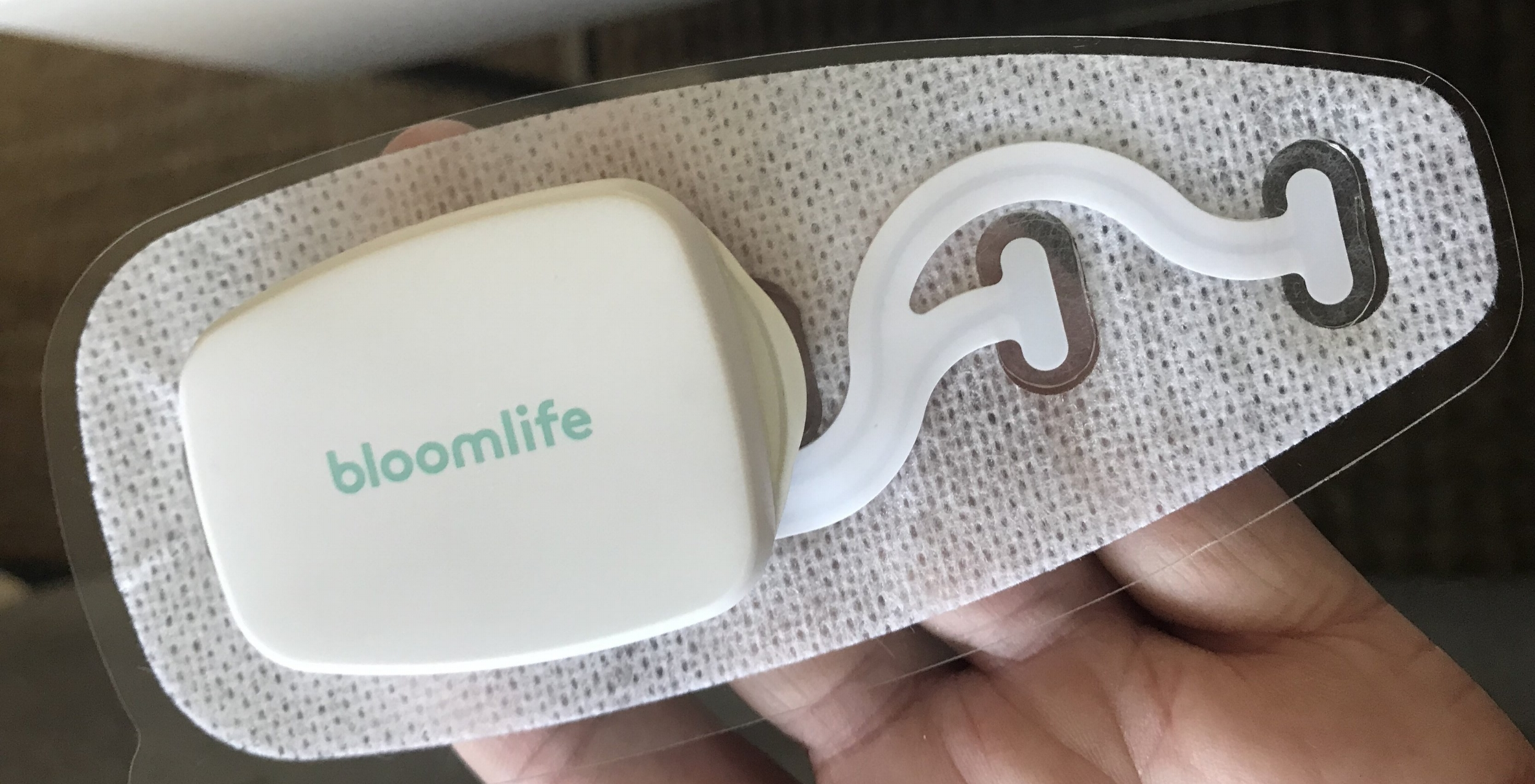 bloom life contraction monitor