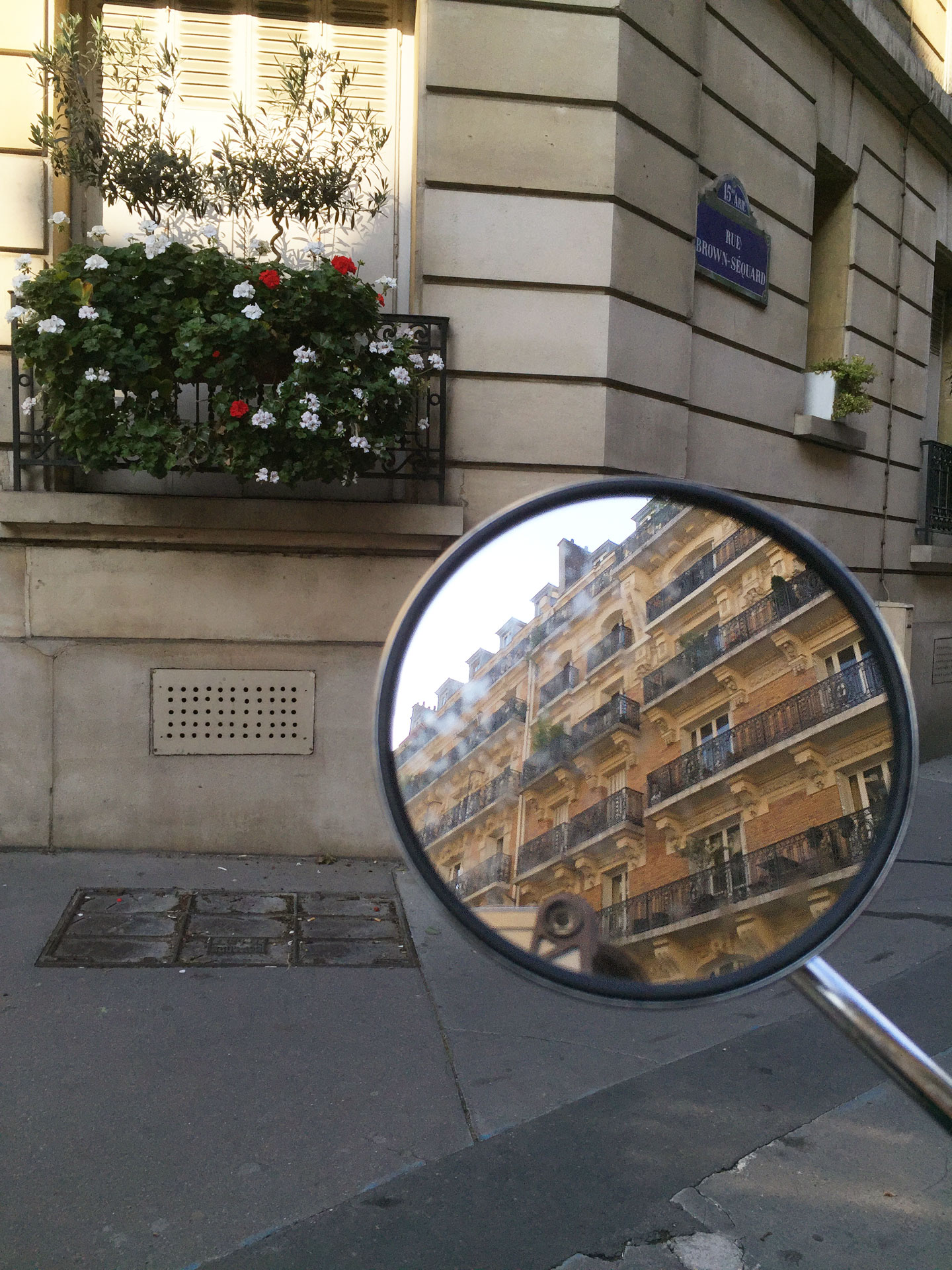 Paris Reflections