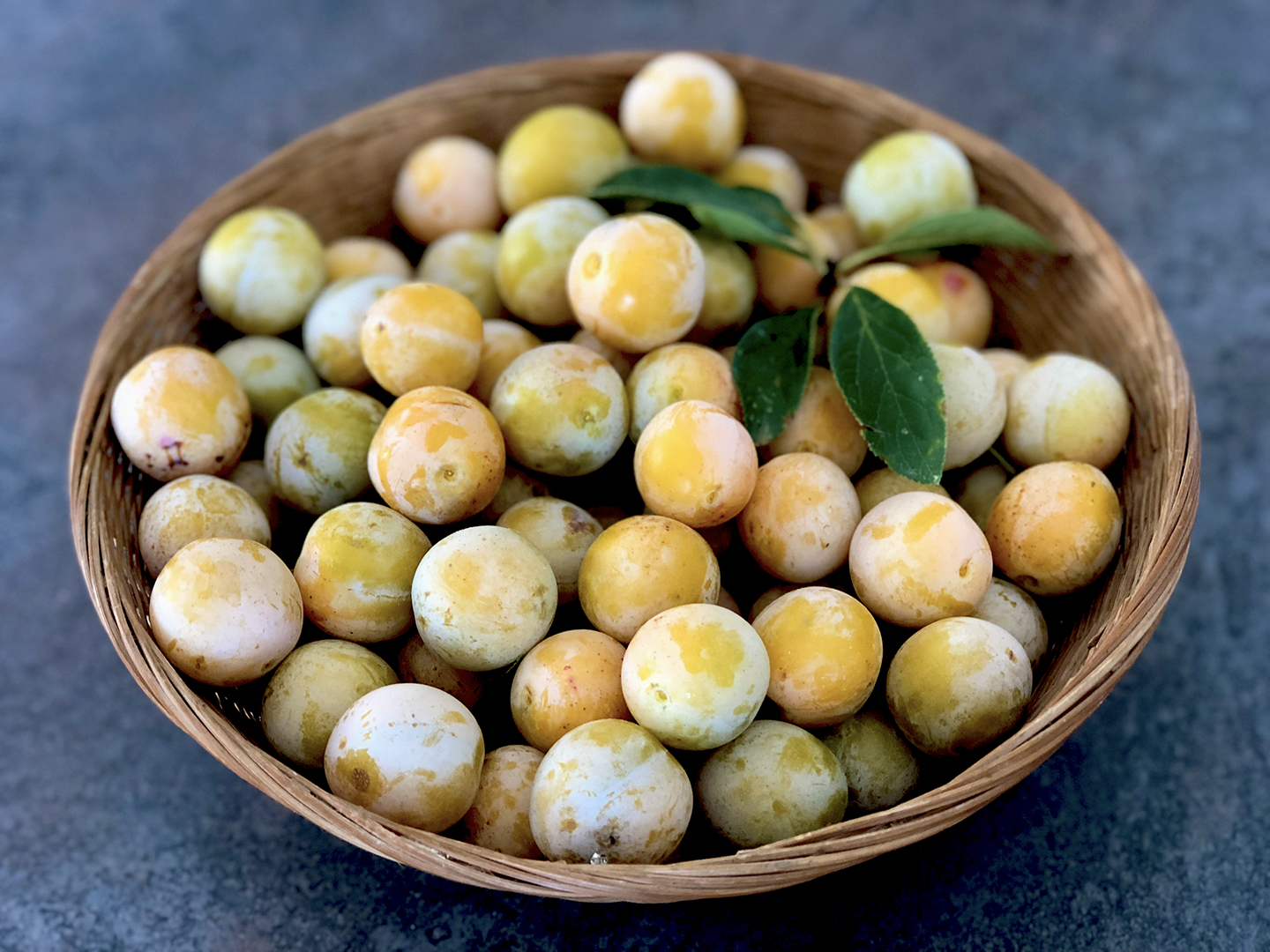 Sweet golden mirabelles