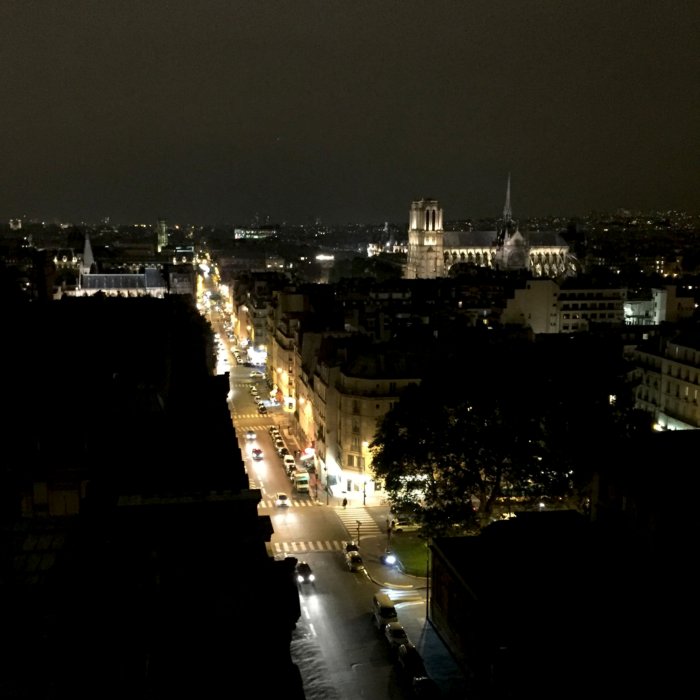 A view from the workshop: Notre-Dame and the Palais de Justice