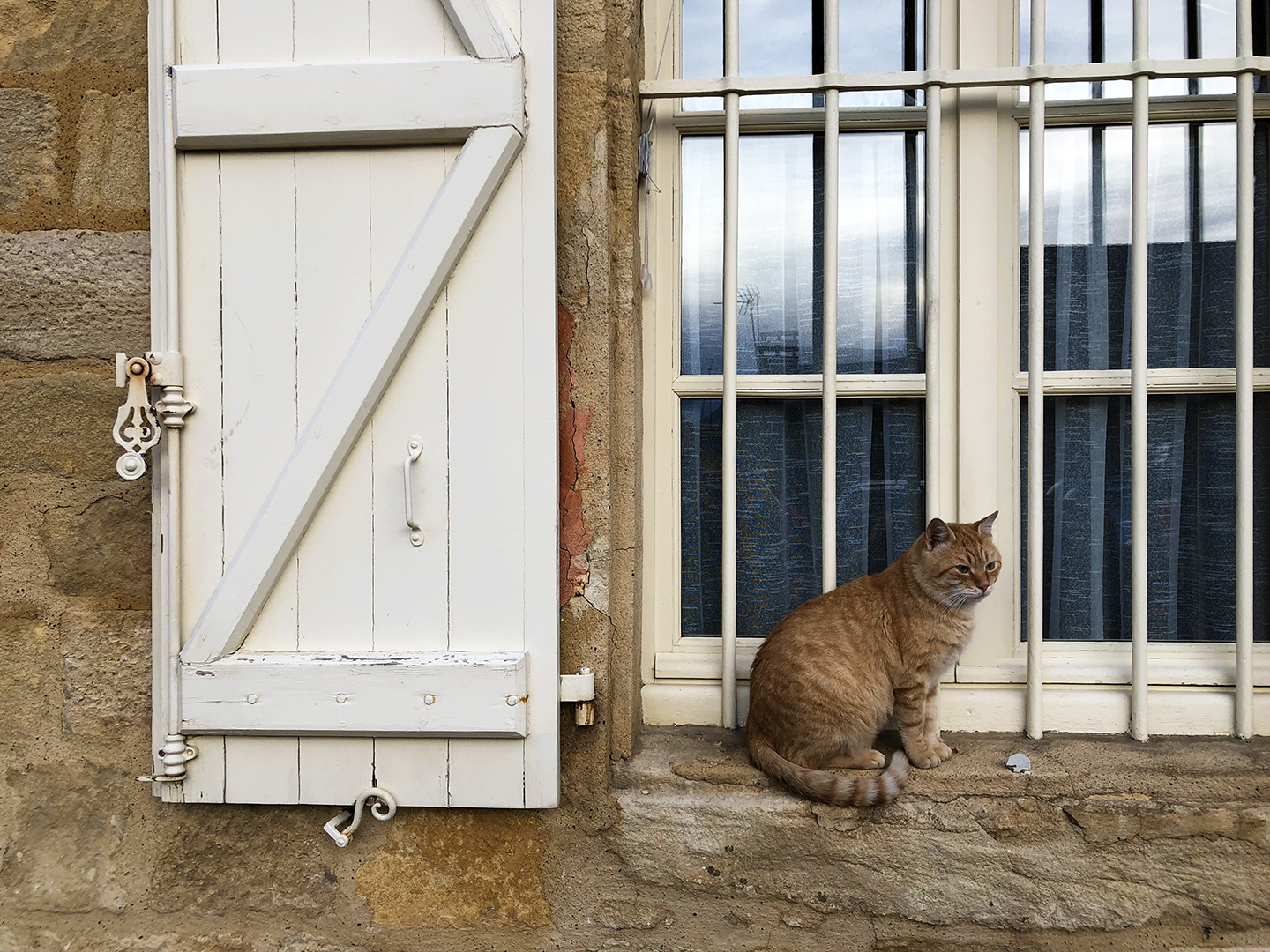 The jail keeper, perhaps? Watchful kitty across the square.