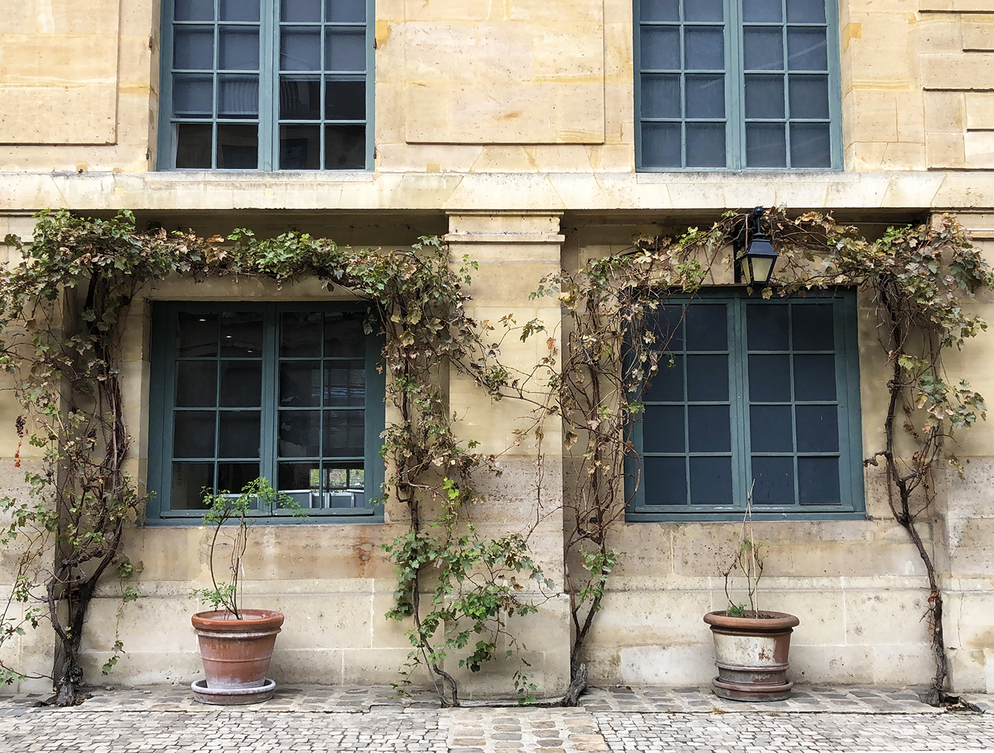 This is why you MUST walk into any open courtyard when strolling in Paris…