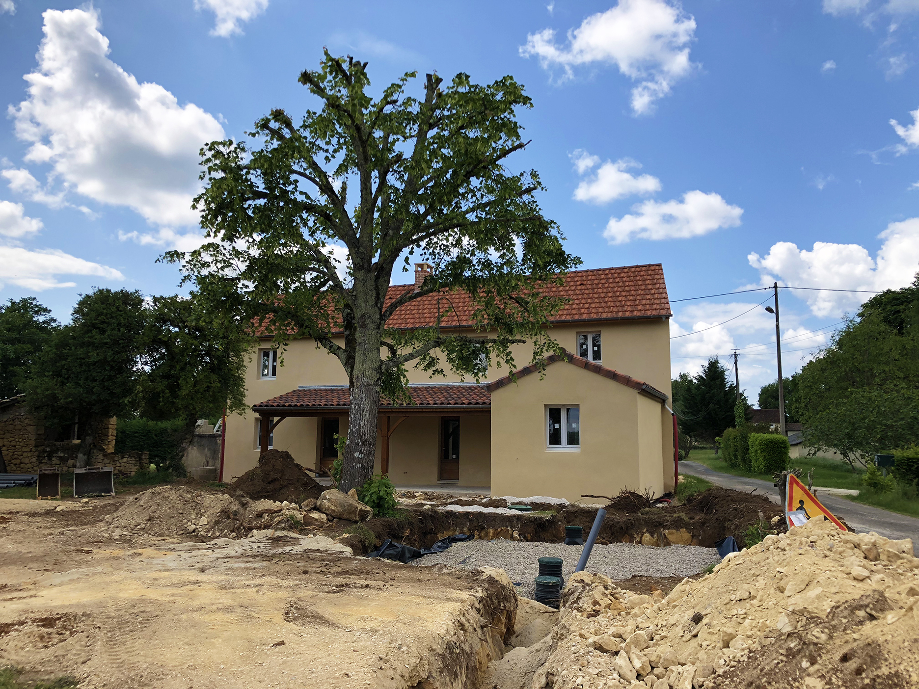 They tried to be as gentle as possible with our linden tree. Although a good chunk of its root system was removed, the tree survived the trauma and is doing well.