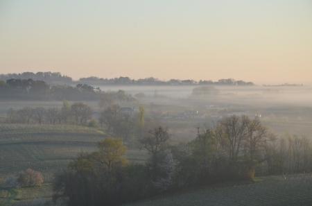 Morning mist in Bordeaux