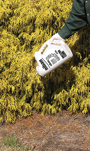 We apply granular or gel baits that are safe around people and animals.
