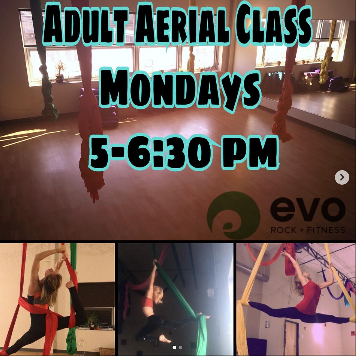 beginner-aerial-classes-evo-rock-gym.png