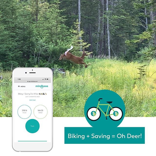 Biking + Saving = Oh 🦌!