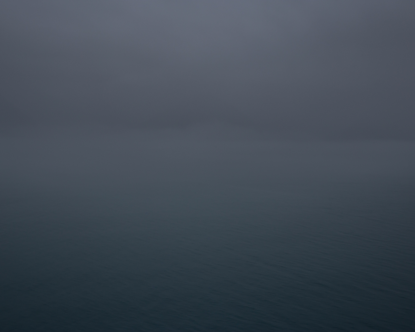 Foggy Horizon, 2015