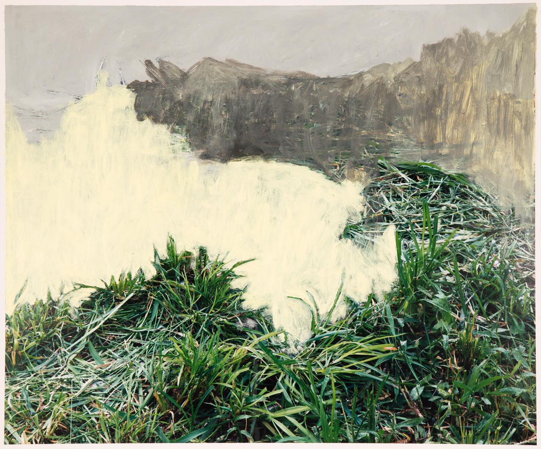 Grass, 2017  20 x 24 inches  Acrylic on C-print