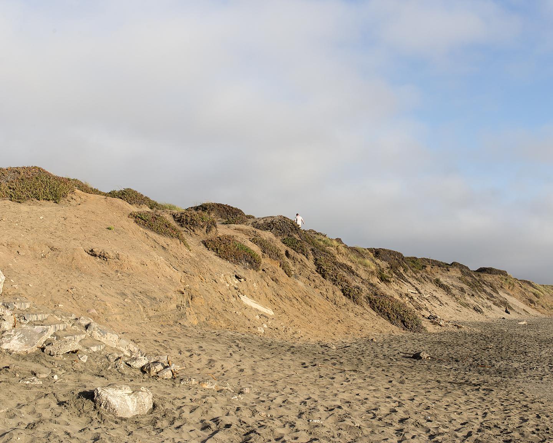 Ocean Beach Dune, 2016