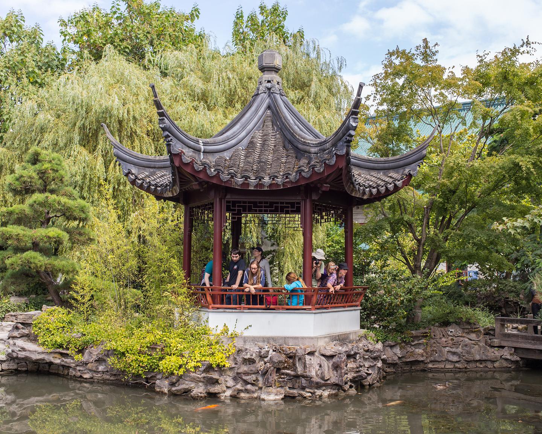 Chinese Garden, 2015