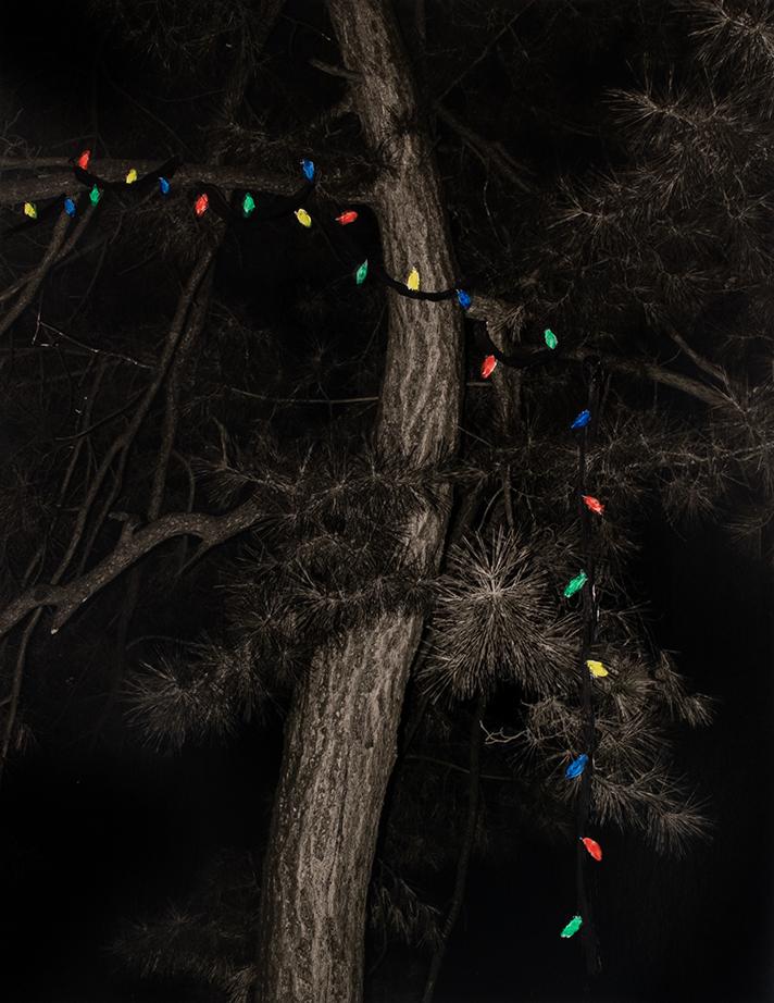 Christmas Lights (Study), 2019  14 x 11 inches  Acrylic on C-print