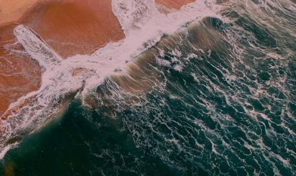 aerial-shot-beach-bird-s-eye-view-971830.jpg