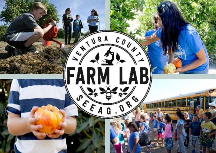 Farm-Lab-Curriculum-Photo-e1481163112766.png